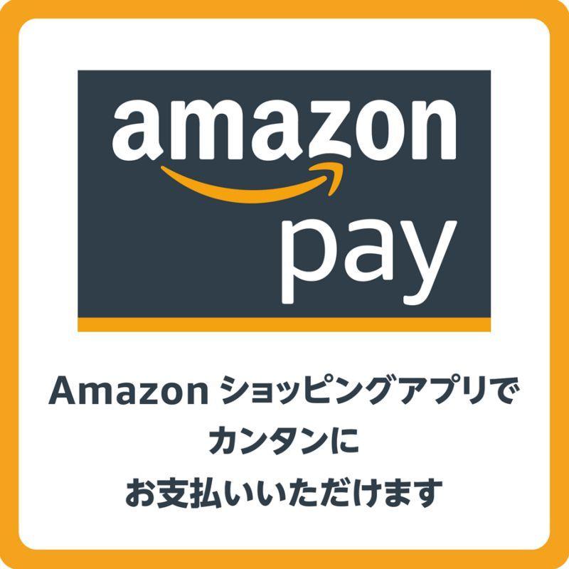 【決済システム導入情報】amazon payが使えるようになりました。